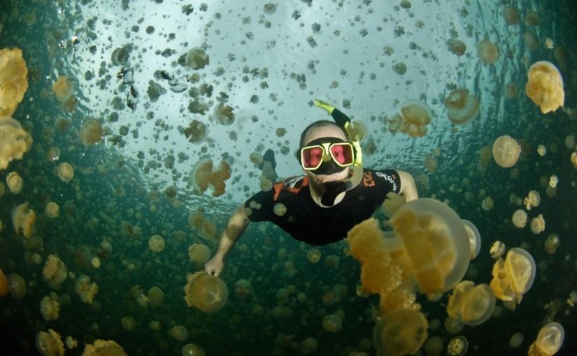 Ongeim'l Tketau – озеро, полное медуз