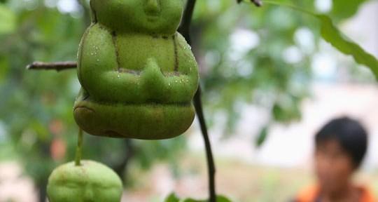 Не хотите ли угоститься… Буддой?