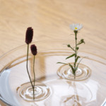 Волшебная ваза от фирмы Oodesign