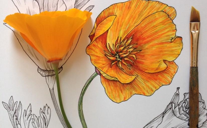 Мечты о весне от Noel Badges Pugh
